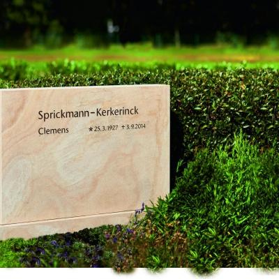 sprickmann_fdw_dsc6644_4c