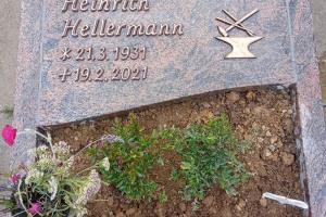 Hoinkhausen bei Rüthen, Urneneinzelgrab mit Teilabdeckung und Ornament
