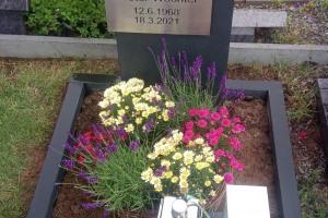 Belm, Urnengrab mit Edelstahlschrifttafel, Laterne und Einfassung
